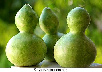 green pumpkins calabashes