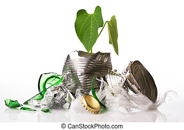 Green recycling concept plant growing out of rubbish on ...