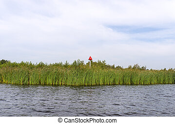 Green reeds growing along the channel that lead to a lake, photo taken in the Netherlands on a cloudy summer day, red sign with the number 1.