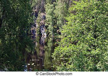 Green Reflection on Lake
