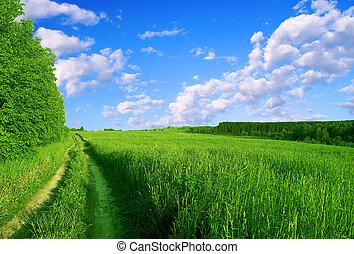 Green road.