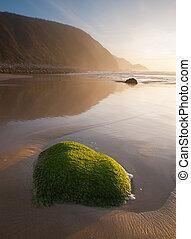 Green rock on the beach