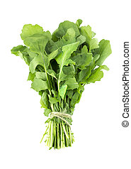 Green Rocket or Roquette leaves isolated on white background...