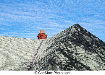 Green roof blue sky