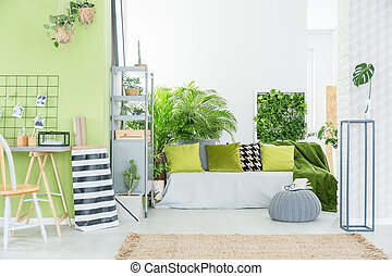 Green room with green pillows