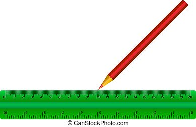 green ruler of red pencil isolated vector