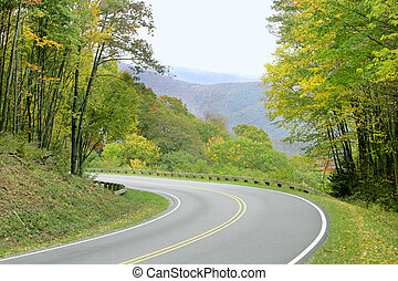 green scenery - summer day on the road in the Great Smoky...