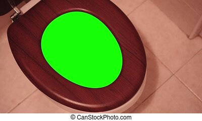 Green screen inside the Water-closet that is opened by a...