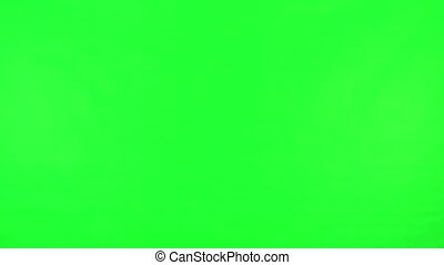 Green Screen Woman Touch Screen Phone