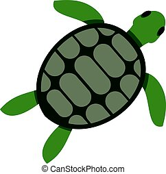 Green sea turtle icon isolated
