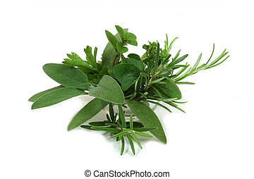 Green seasoning - Sage, rosemary, parsley and oregano -...