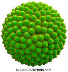 Green Seed Cluster, Basic Model, Fibonacci Sequence - Basic...