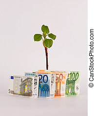 Green Shoots with Euros/Money