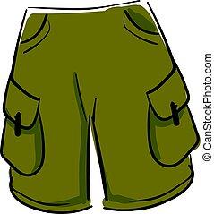 Green shorts, illustration, vector on white background.