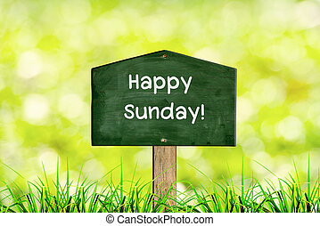 Green sign board with natural background and message Happy Sunday