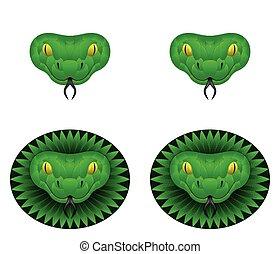 Green snake head