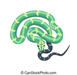 Green snake isolated on white background. Tropical legless reptile, venomous predator, wild carnivorous animal. Boa or python. Desert or jungle fauna. Vector illustration in flat cartoon style.