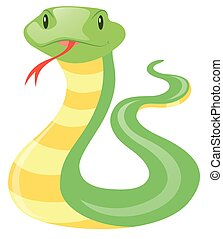 Green snake on white background