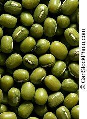 Green soya beans texture