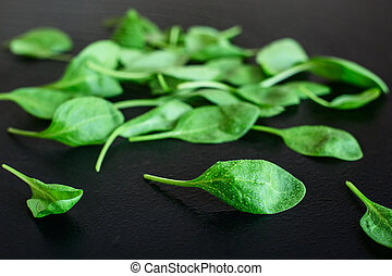 Green spinach leaves on a black background