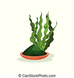 Green spirulina grass and plate with powder. Vegetarian food. Healthy nutrition. Superfood theme. Flat vector design
