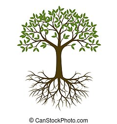 Green Spring Tree with Root. Vector Illustration. Plant in...