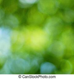 Green springtime bokeh background