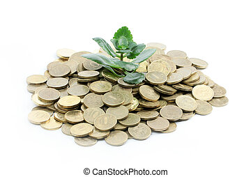 Tender little green sprout and metallic coins rouble