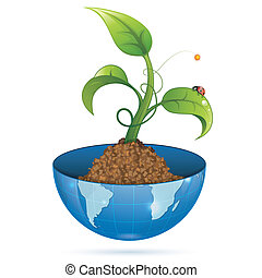 Green Sprout - Young Green Sprout from the Earth with Water...