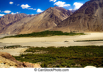 green sub himalayan vegetation below High dynamic range image of barren mountain in a desert with river in ladakh, Jammu and Kashmir, India