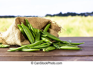 Green sugar snap pea with field behind - Lot of whole green ...