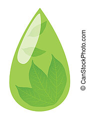 Green tea drop and fresh green leaves inside it background vector concept