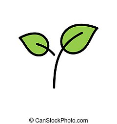 Green tea leaves vector icon, filled style