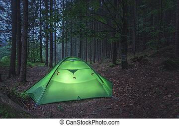 ... tent - green tent on forest closeup & Tent Images and Stock Photos. 51728 Tent photography and royalty ...