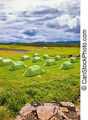 Green tent on grassy lawn Boy Scout camp