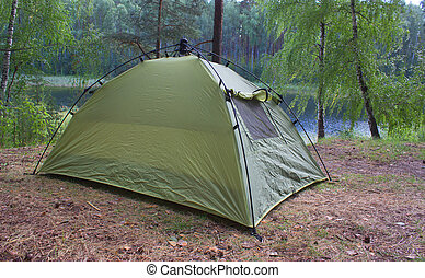 green tents are in the forest
