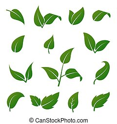 Green tree and plant leaves vector icons isolated on white background. Eco symbols set