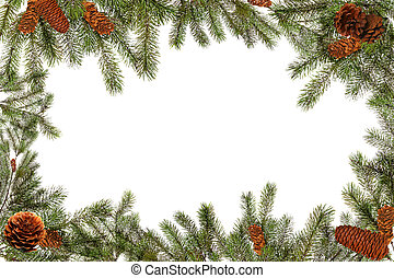 Green Tree Branches and Pinecones on a White Background