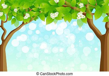 Green Tree Frame