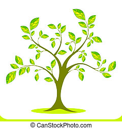 Green Tree - illustration of growing tree on white...