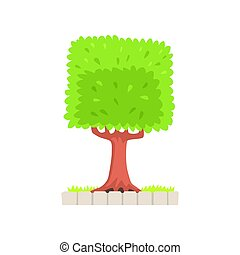 Green tree with a square crown vector Illustration