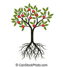 Green Tree with Root and apple. Vector Illustration. - Green...