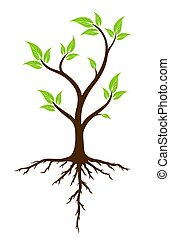 Green tree with roots. - A logo of green tree with root...