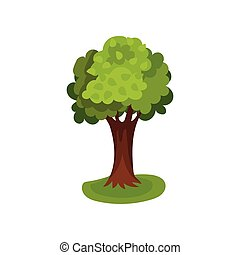 Green tree with round crown vector Illustration
