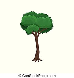 Green tree with rounded crown vector Illustration on a white background