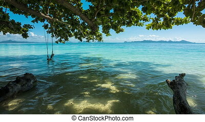 Green tree with swing and sea
