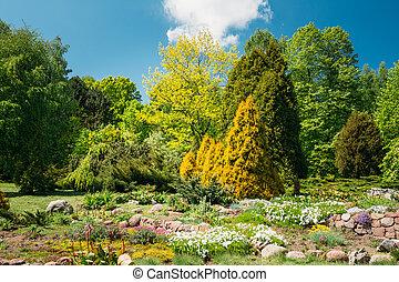 Green Trees And Bushes In Garden. Garden design