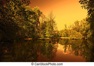 Green trees by the lake at sunset