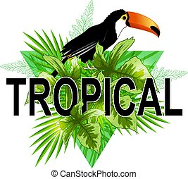 Green triangle with toucan