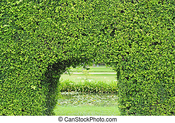 green tunnel of trees with light